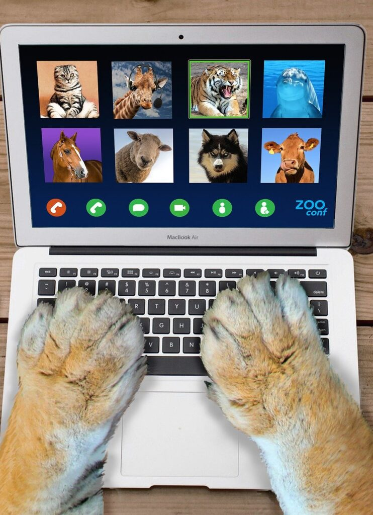 two paws rest on the keyboard of a tiny laptop. on the screen is a video conference interface with avatars of eight animals who are participating